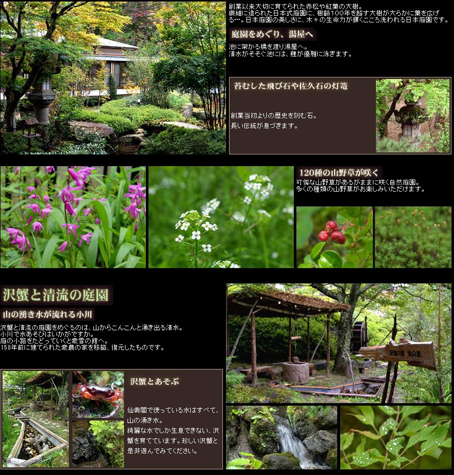 沢蟹と清流の庭園